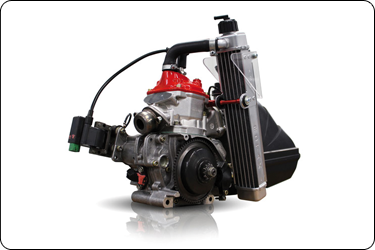 moteur-Rotax-Micromax.png